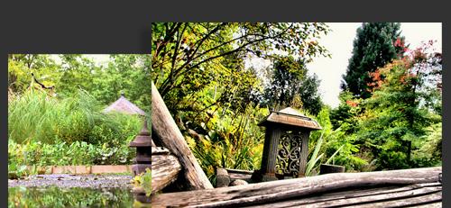 Jardin la grenouillere de fran oise lacaze aux essarts le for Jardin japonais yvelines